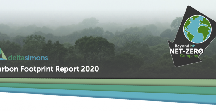 Delta-Simons Carbon Footprint Report 2020